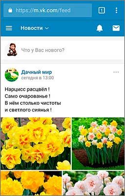 Личная страница Вконтакте (мобильная версия)